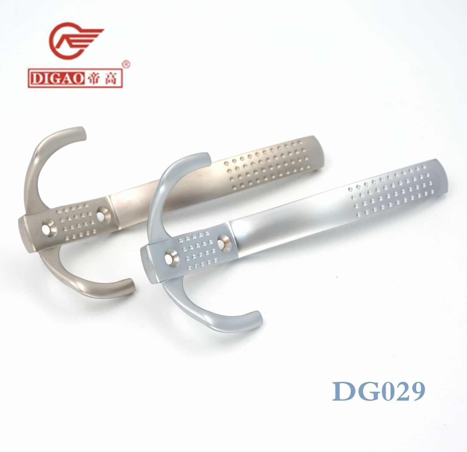 DG029